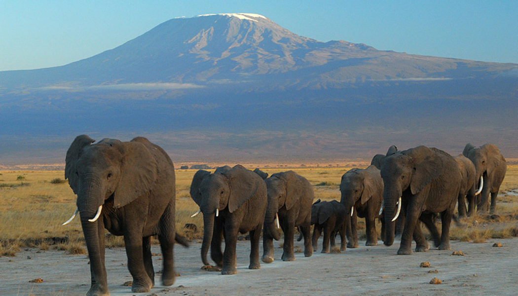 """Adventure Travel : The Most Exhilarating """"Must Do"""" Trips"""